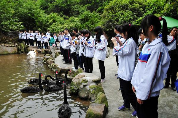 四川成都崇州蜀城中学     来到碧峰峡野生动物园,同学们分批乘坐观